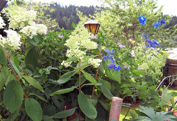 Haus Hildegard: Aufgang