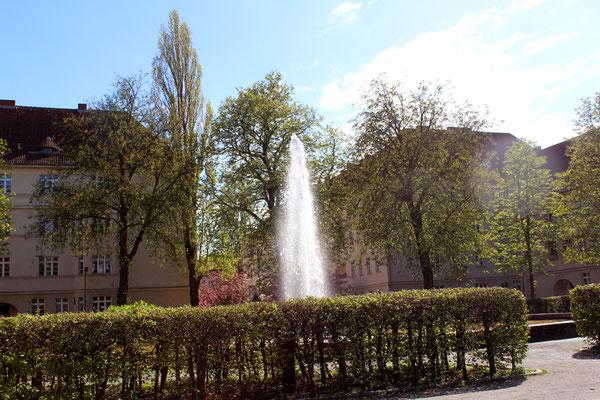 Springbrunnen Ceciliengarten Berlin mit Blick auf Japanische Kirschblüte. Foto: Helga Karl