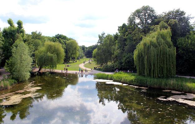 Teich, Liegewiesen und Landschaftsgarten Rudolph-Wilde-Park in Berlin-Schöneberg. Foto: Helga Karl