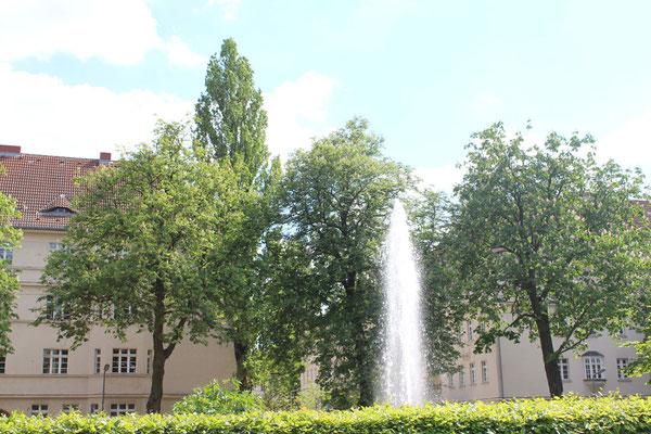 Fontaine Ceciliengerten vor blühenden Kastanienbäumen. Foto: Helga Karl