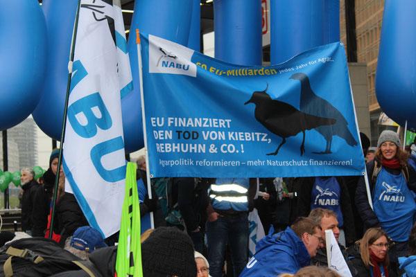 "NABU-Transparent: ""Agrarpolitik reformieren - mehr Naturschutz finanzieren"". Foto: Helga Karl 21.12017 Berlin"