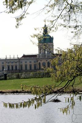 Schloss Charlottenburg im Frühling. Foto: Helga Karl