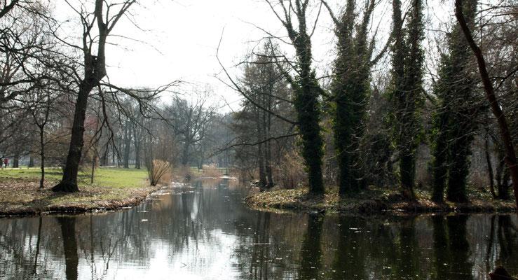 Naturlandschaft im März, rechts die Spitze der Luiseninsel im Schlosspark Charlottenburg. Foto: Helga Karl