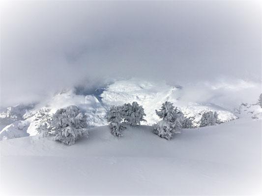 Winter-Zauber im Januar 2020