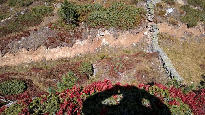 2016 30.9. Naturschutzmauer