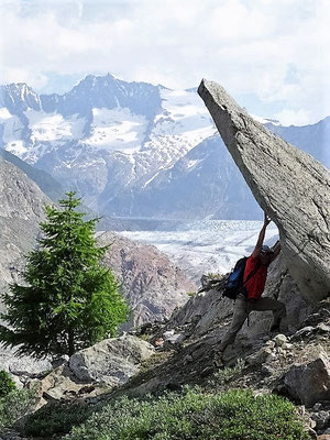 2015 Sommer, im Berghang, der 1 Jahr später abrutscht
