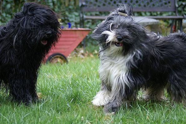 Yeshi und Jita