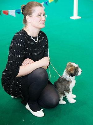 Puppyklasse März: Schauen mit Frauchen