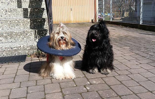 Die Patientin und der Sohnemann genießen die warmen Sonnenstrahlen im März