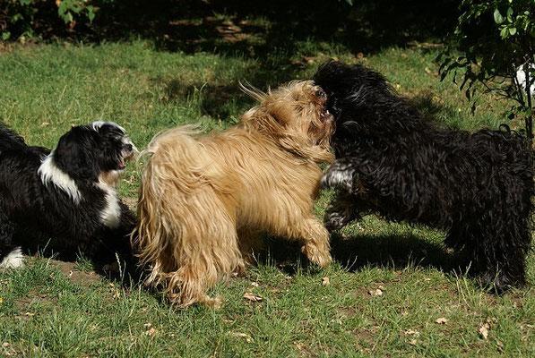 Lisha beim Spielen mit Bya-ra und Yeshi