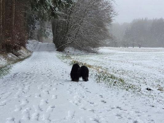Schneemännlein Yeshi