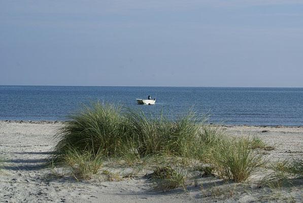 Dänemark 2015 - Unser Strand