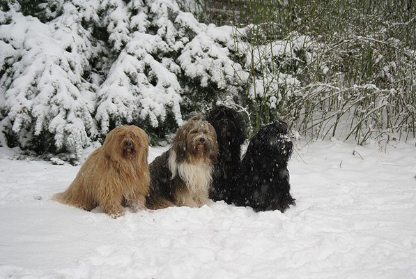 Leise riesel der Schnee