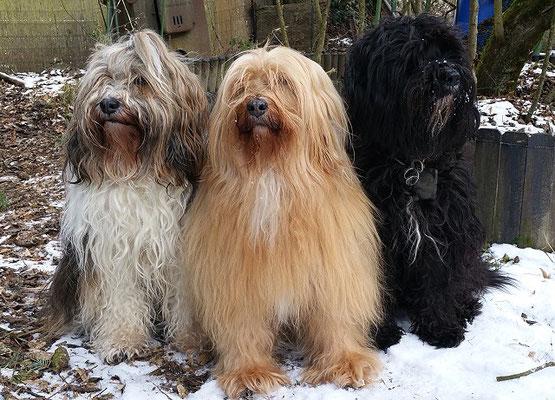 Mädels-Trio: Milka, Bya-ra und Kar-mi