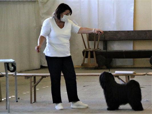 Manuela und Puccini - offene Klasse Rüden