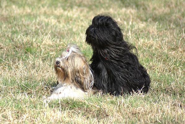 Milka und Yeshi