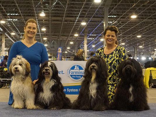 Müde, glücklich und sehr stolz auf unsere tollen Hunde (v. li. nach re. Han-na, Lisha, Cham-ba u. Puccini)