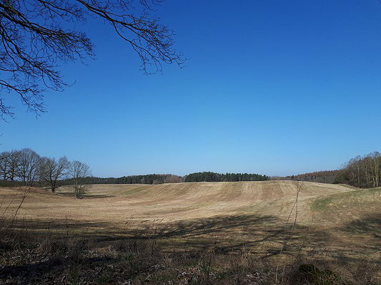 Landschaft am Stettiner Haff