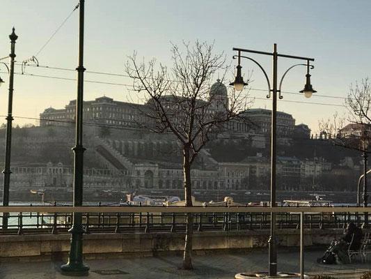 Tag 1: Blick über die Donau