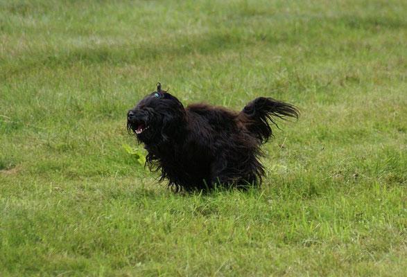 Turbo-Yeshi
