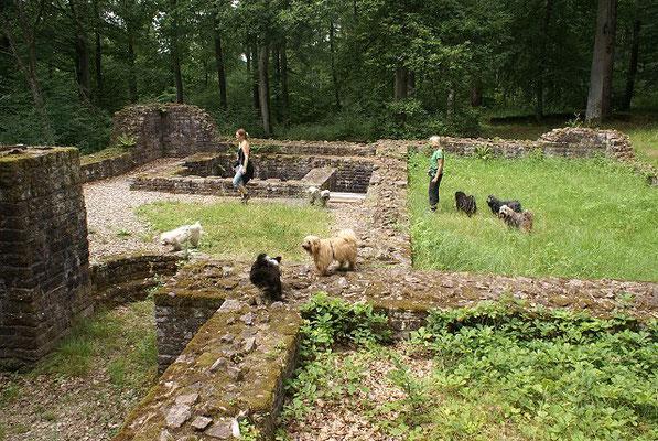 19.7.15 - Wanderung zur Villa Rustica - Blick auf die Wandergruppe