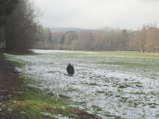 Yeshi freut sich über den letzten Schnee