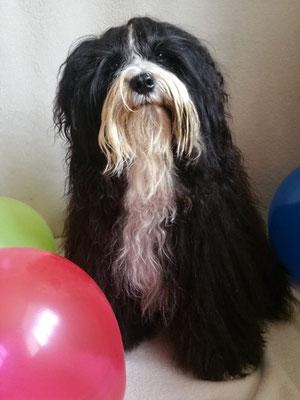 Mihu an seinem dritten Geburtstag