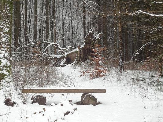 Ein Hauch von Winter im Februar 2016