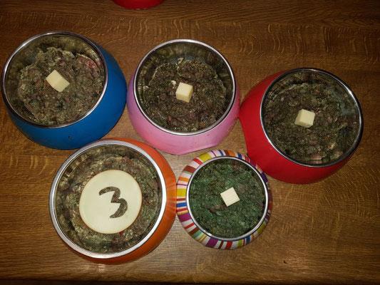 Partyfutter für Han-nas Rudel, Käse lieben alle!