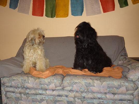 Fiona und Yeshi