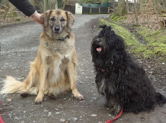Yeshi mit Freundin Lucy