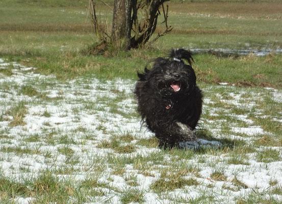 Yeshi gibt nochmal richtig Gas im Schnee