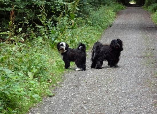 Lisha und Yeshi beim Spaziergang
