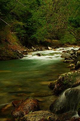 Adour de Campan - Hautes Pyrénées - France