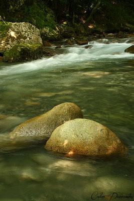 Adour de Gripp - Hautes Pyrénées - France