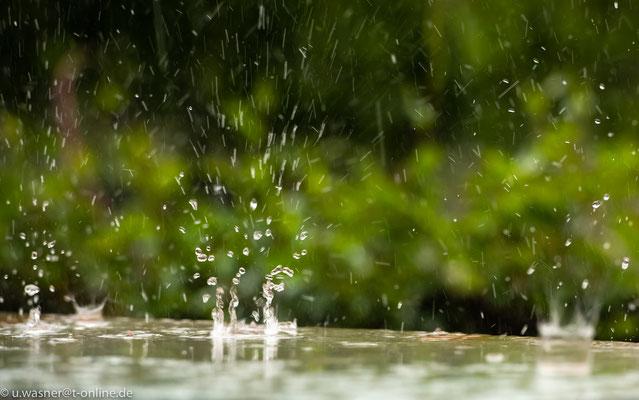 Regentropfen auf Glasplatte (Experiment)