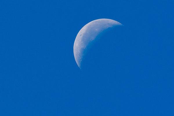 Der Mond am am 06.08.2018 um 10:50 Uhr vormittags
