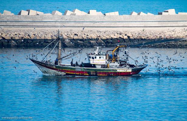 Casablanca, Fischerboot zurück vom Fang