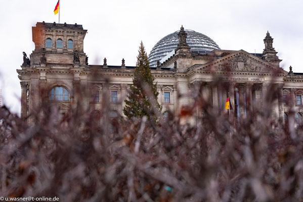 Reichstag hinter der Hecke