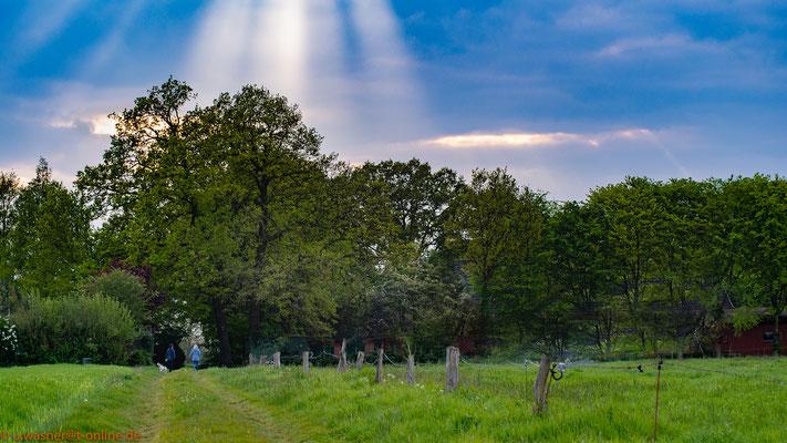 into the light -zufälliges Lichtspiel mit 2 Spaziergängern