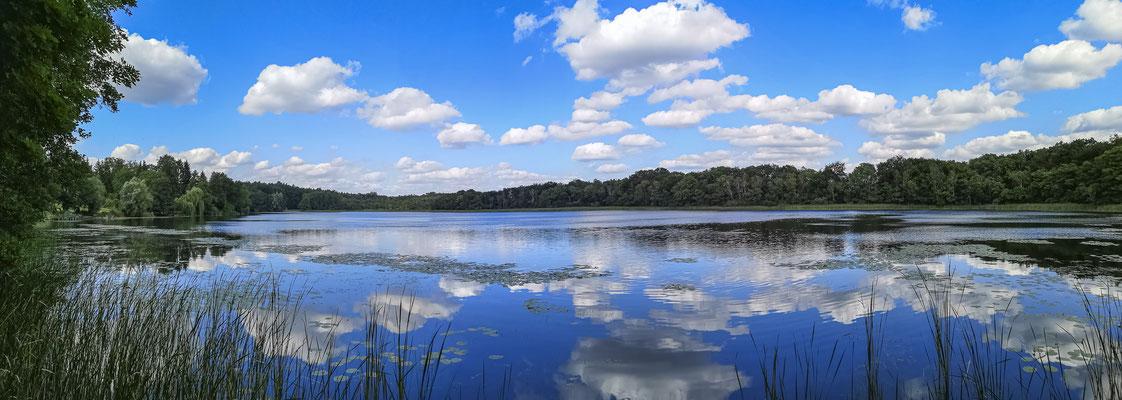 Großer Prälanksee Mecklenburger Seenplatte