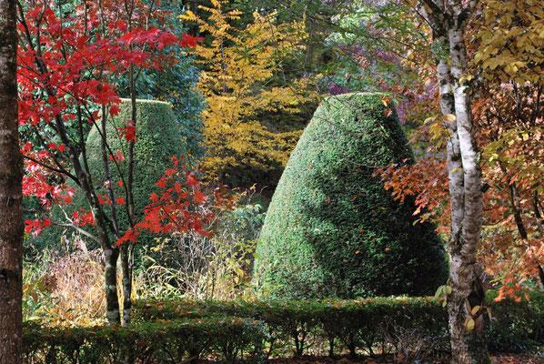 Arboretum Sedelle 1
