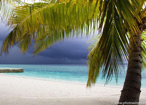 Unwetter Strand mit Palme