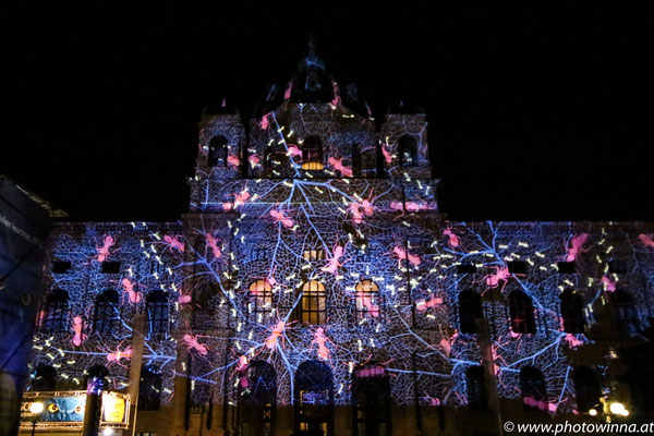 Wien leuchtet - Ameisen
