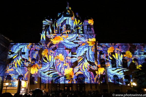 Wien leuchtet - Flowers