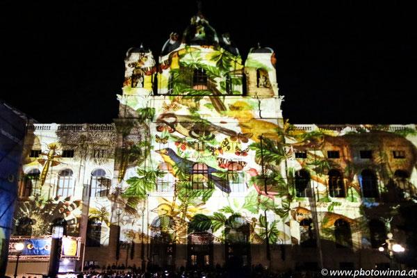 Wien leuchtet - Birds