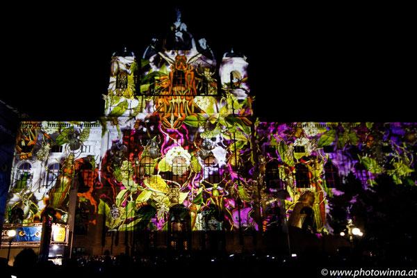 Wien leuchtet - Kaefer
