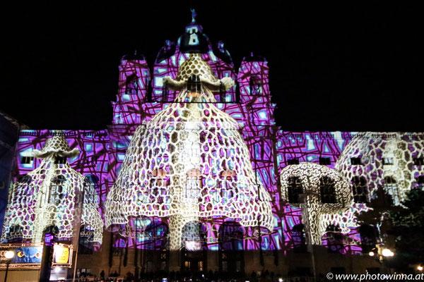 Wien leuchtet - Pilze