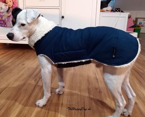 Hundemantel Maßanfertigung