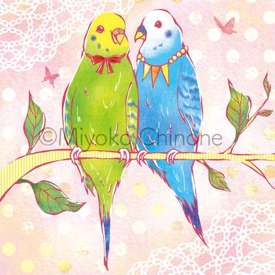 鳥 インコ イラスト